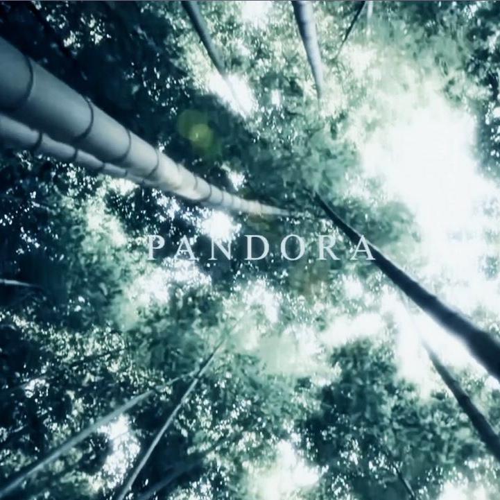 PANDORA XFD